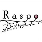 Raspo